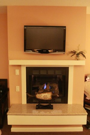 Mariposa Inn and Suites: TV and Fireplace...not to be used at the same time...you'll see