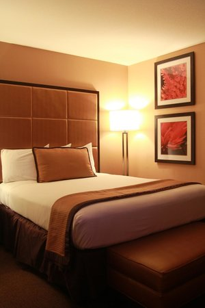 Mariposa Inn and Suites: More of room 218