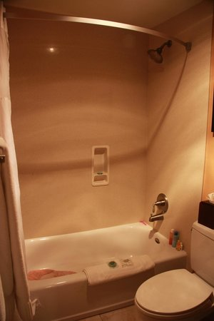 Mariposa Inn and Suites: updated tub/shower