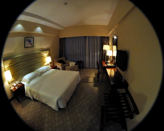 Guilin Plaza Hotel: Double Bed Room