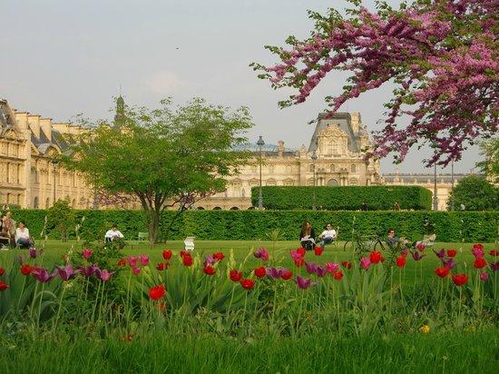 Tuileries garden picture of jardin des tuileries paris for Jardin des tuileries