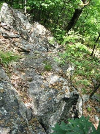 Sterling Forest State Park: Sterling Ridge descent