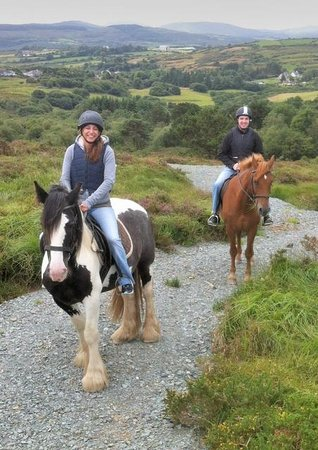 Bantry Bay Pony Trekking - Private Rides: Treks on safe private bridal paths