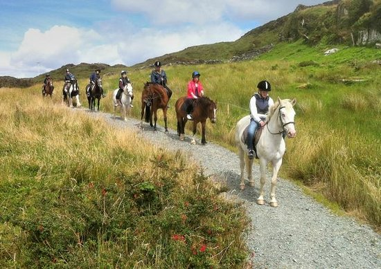 ‪Bantry Bay Pony Trekking - Private Rides‬