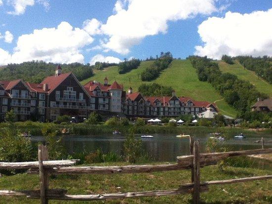 Westin Trillium House Blue Mountain: View of the village