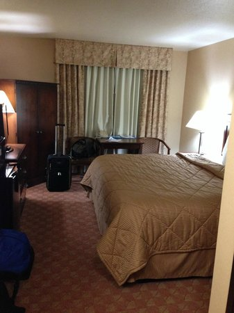 Comfort Inn Newport: King Room