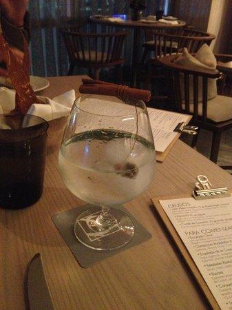 Anatol en Las Alcobas: Gin tonic
