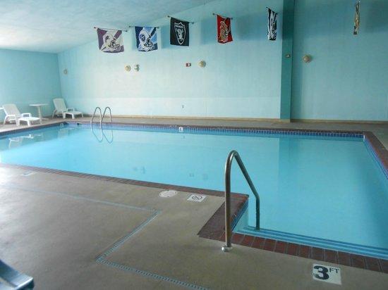 Quality Inn Stadium Area : Pool