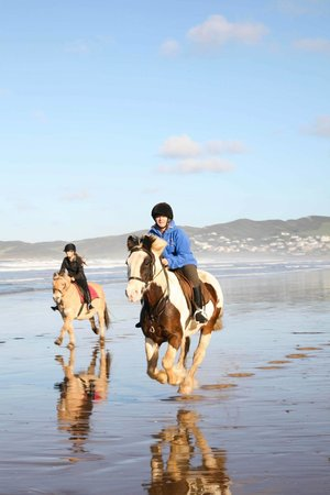 Mullacott Equestrian Centre: Cantering on the beach on the beach