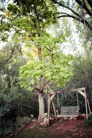 Creekside Inn at Sedona: Beautiful trees