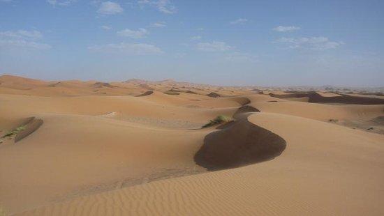 Krikich Day Tours: Sahara