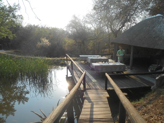 Marc's Treehouse Lodge: breakfast dock, amazing!