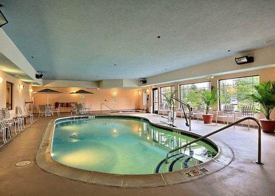 Comfort Suites Grand Rapids North: Indoor Pool