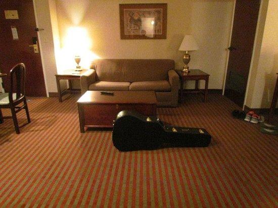 Comfort Suites: living room area.