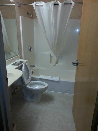 Microtel Inn & Suites by Wyndham Baldwinsville/Syracuse: Bathroom, was clean