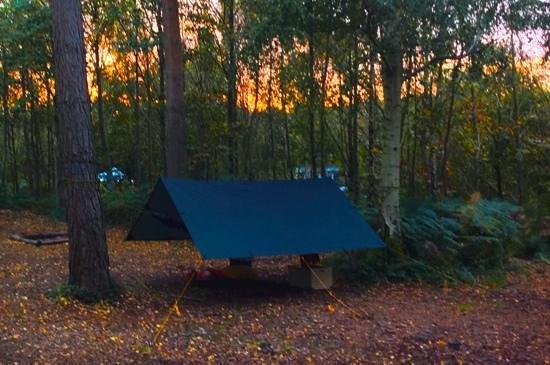 Eco Camp UK - Beech Estate Woodland Campsite: Autumn sunrise at my one-man camp