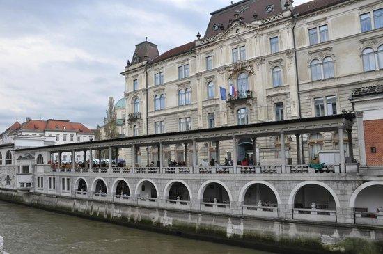 River Ljubljanica Kanal: Il fiume Ljubljanica