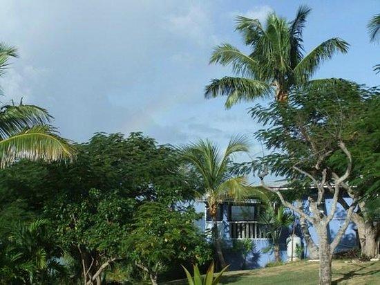 Rainbow Inn : Restaurant from the side