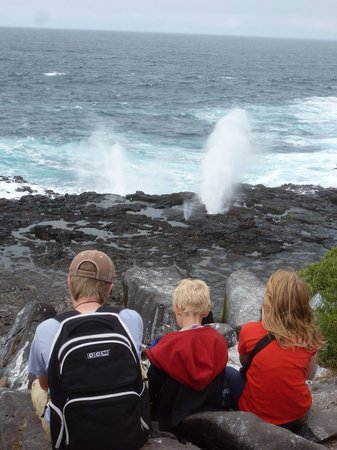 CarpeDM Adventures - Day Tours: Watching the whale blow hole surf at the Galapagos