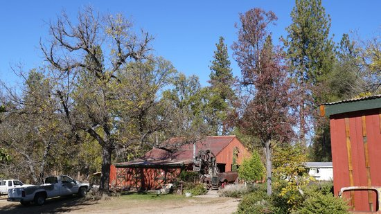 Meadow Creek Ranch Bed and Breakfast Inn : the surroundings