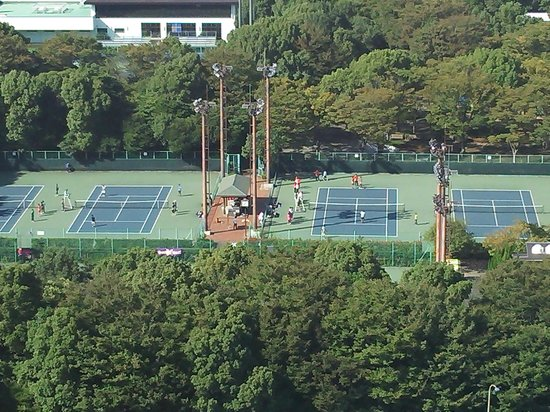 Ariake Tennis Forest Park: テニス