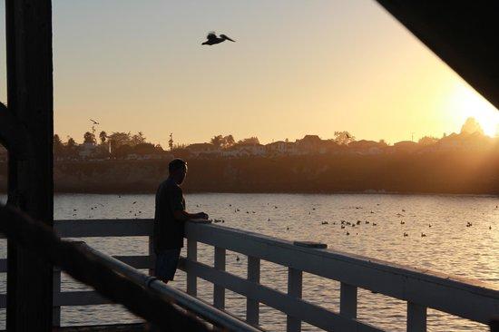 Santa Cruz Wharf: Fishing