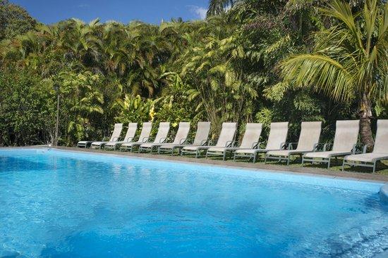 Pura Vida Retreat & Spa: Pool