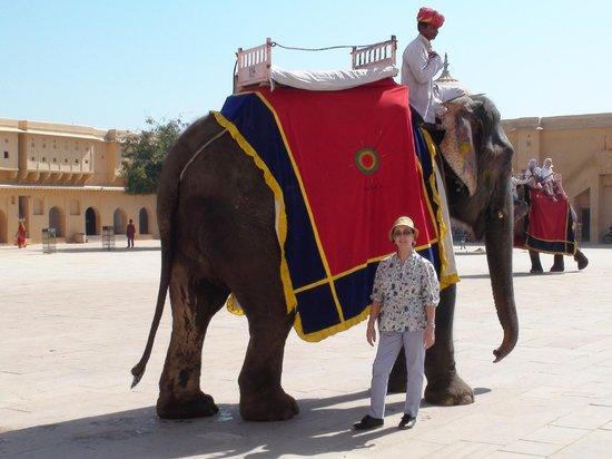 The Oberoi Rajvilas: Espero motivar con mis imagenes la necesidad de viajar a la India