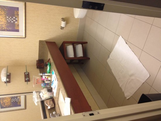 Courtyard by Marriott Detroit Downtown: Plenty of room to dance in the bathroom.  However there was only towels for one