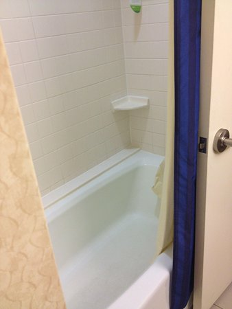 Courtyard by Marriott Detroit Downtown: Tub beds to be redone