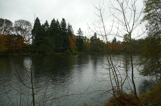 The Valley River Inn: Willamette