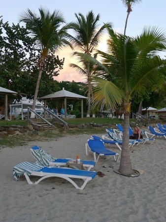 Bluebeard's Beach Club and Villas: Beach Chairs and Palm Trees at their Private Beach
