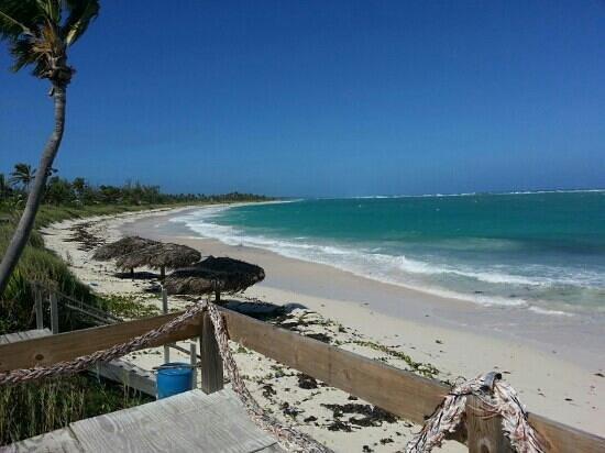 Pineapple Fields Resort : Tippys Beach