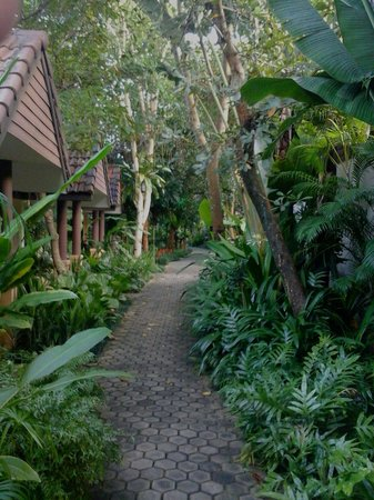 Laluna Hotel and Resort: Les bungalows