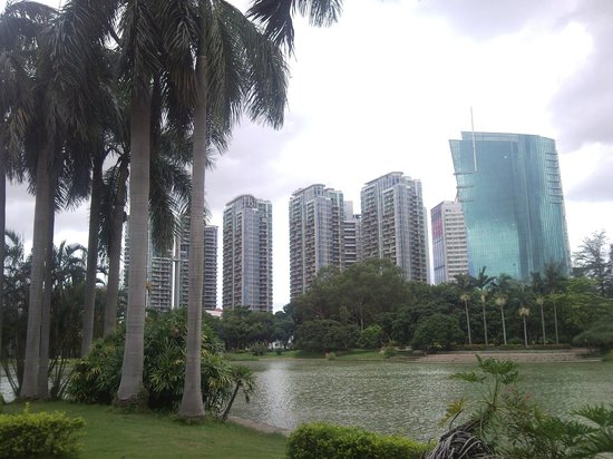 Shenzhen University: Город снаружи