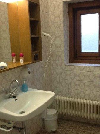 Hotel Gasthof Goldener Löwe: Ванная комната