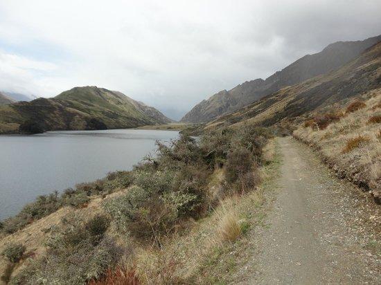 Moke Lake: Easy walking track around the lake