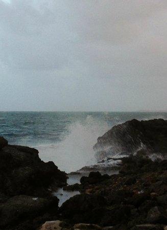 The Condado Plaza Hilton: Ocean