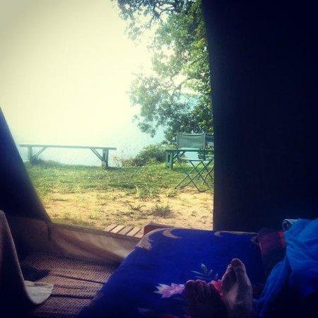 Nkuringo Bwindi Gorilla Lodge: view from tent