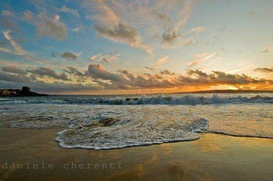 B&B Le Ginestre: Spiaggia di Portopaglietto