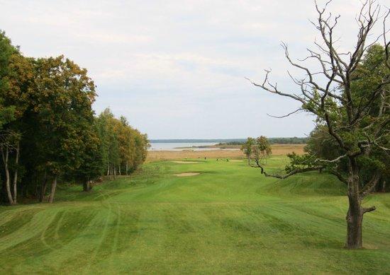 Estonian Golf & Country Club: 3rd - Signature par 4