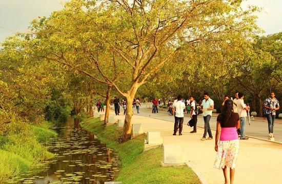 Diyatha Uyana : Walking People