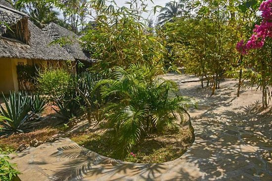 Mawimbi Lodge: Rooms Overlook/esterno camere