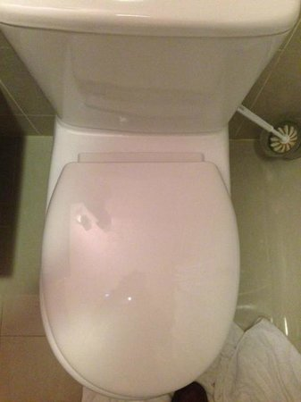 Old Mill Hotel: Poorly Fitted Toilet