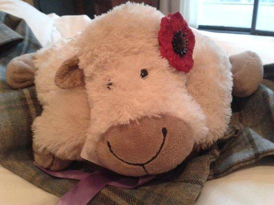 Feversham Arms Hotel & Verbena Spa: room 35 - do not disturb stuffed toy