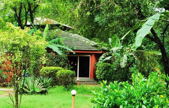 Dudhsagar Spa Resort Reviews