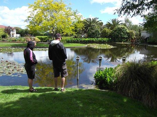 Ngatea Water Gardens : WE ENJOYED THE SCENERY & PARKING METERS IN LAKE!