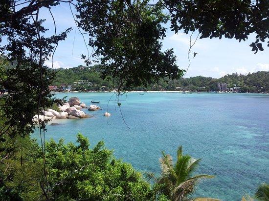 View Point Resort : vue chambre villa