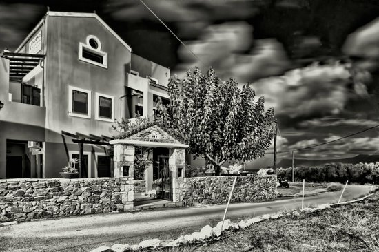 Olive Tree Apartments: Entrance b&w