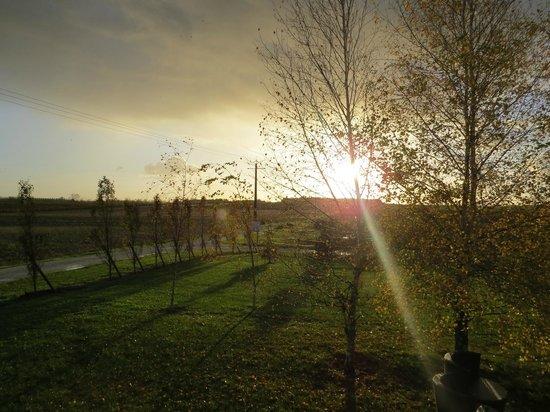 Domaine des Vigneres : Réveil